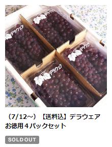 (7/12~)デラウェア お徳用4パックセット