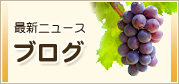 最新ニュース・ブログ